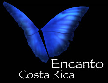 click here to view Encanto's Website