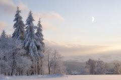 02 vine iarna
