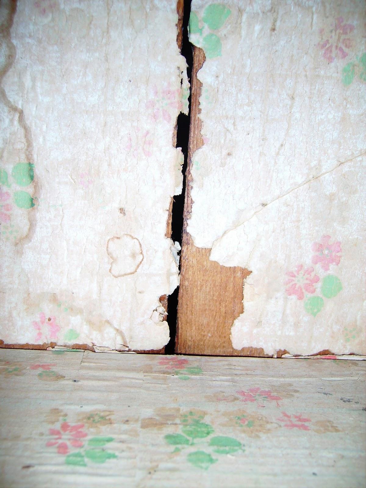 http://3.bp.blogspot.com/_Uch-s2FhDsU/TUtpFGEfRAI/AAAAAAAAAFI/Rcog88CIXFE/s1600/010.JPG