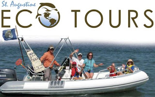 BIRDING, RUNNING, EATING, SWINGING, AND SINGING! 3  ecotour%2Bboat%2Bweb St. Francis Inn St. Augustine Bed and Breakfast