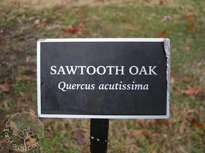 Zadie E. Kuehl Arboretum Sign