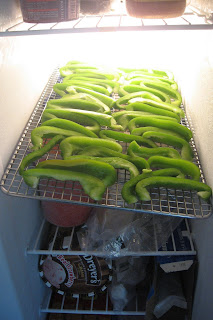 bell peppers on rack in freezer