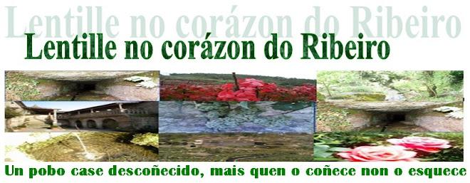 """""""Lentille no corazón do Ribeiro"""""""