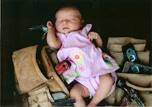 Savannah in Daddy's Tool Belt