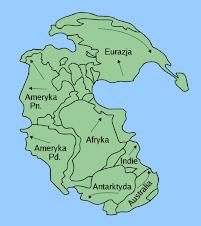 Pangea Aquatics