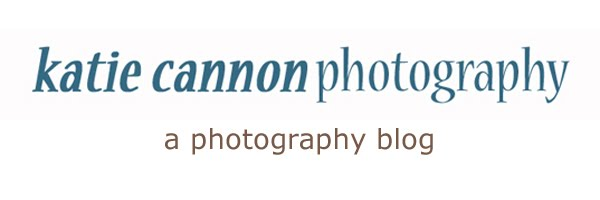 Katie Cannon Photography Blog / Twin Cities Photographer