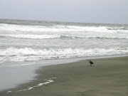 It was overcast, cloudy and a bit gray at ocean beach but for me it's just .