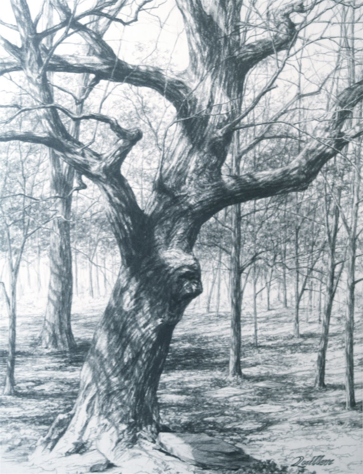 Beautiful drawings of fairies new calendar template site for Beautiful drawings of trees