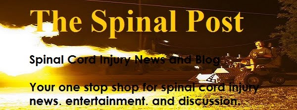THE SPINAL POST
