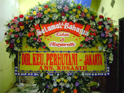 BUNGA PAPAN BAHAGIA