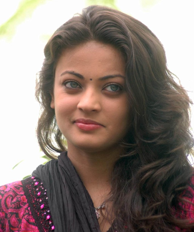 sneha ullal great quality wallpapers - Sneha Ullal Great Quality HD Wallpaper Free HD Wallpaper