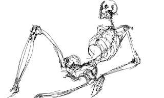 Sketch of a skeleton reclining