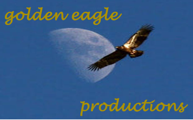 golden eagle logo. We used an eagle as our logo as it indicates power and domination over all
