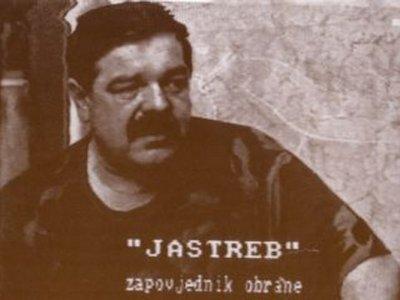 Image result for mile dedaković jastreb