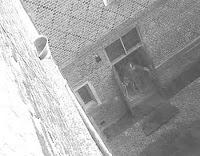 صورة الشبح الذي التقطته كاميرا الأمن