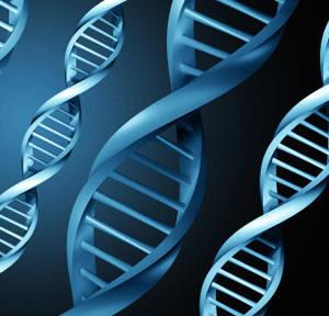 سلاسل الحمض النووي تمتلك القدرة على التخاطر ، فهي تبني نفسها إعتماداً على سلاسل أخرى مجاورة لها