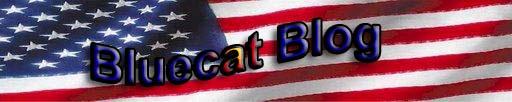Bluecat Blog