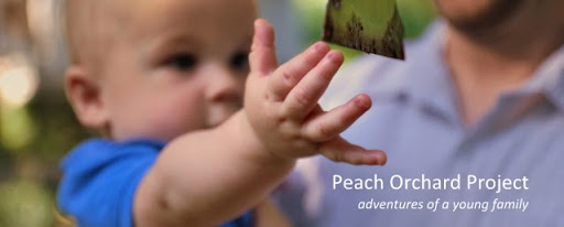 Peach Orchard Project