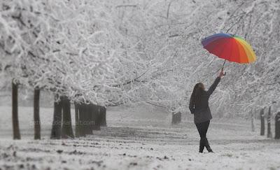 چترهای بارانی