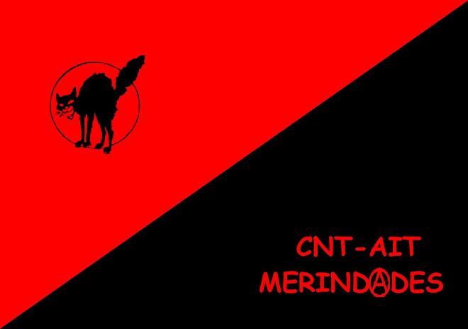 CNT-AIT MERINDADES