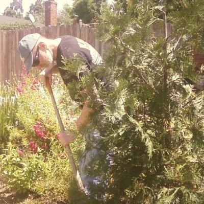 Wayne plants a tree