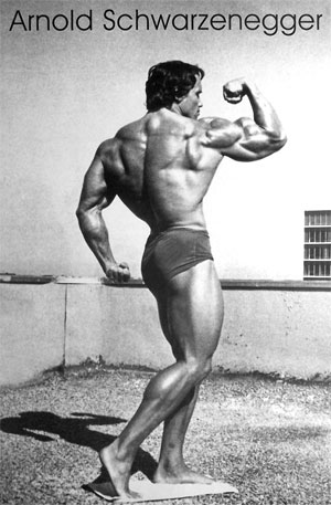 arnold schwarzenegger workout pics. arnold schwarzenegger workout.