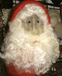 Red Hooded Santa Ornie