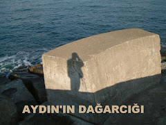 Aydın'ın Dağarcığı