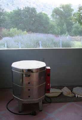 new to me Skutt kiln with lavender view