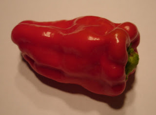 one-of-my-cubanelle-peppers-fresh-from-my-garden