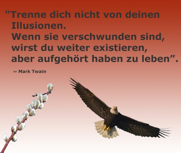Zitate ziele im leben sprüche von mark twain glaube an dich selbst