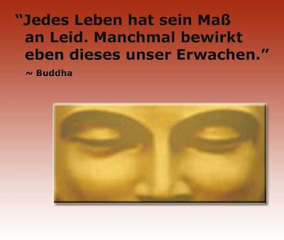 zitate buddha lebensweisheiten buddha weisheiten ber das erwachen. Black Bedroom Furniture Sets. Home Design Ideas