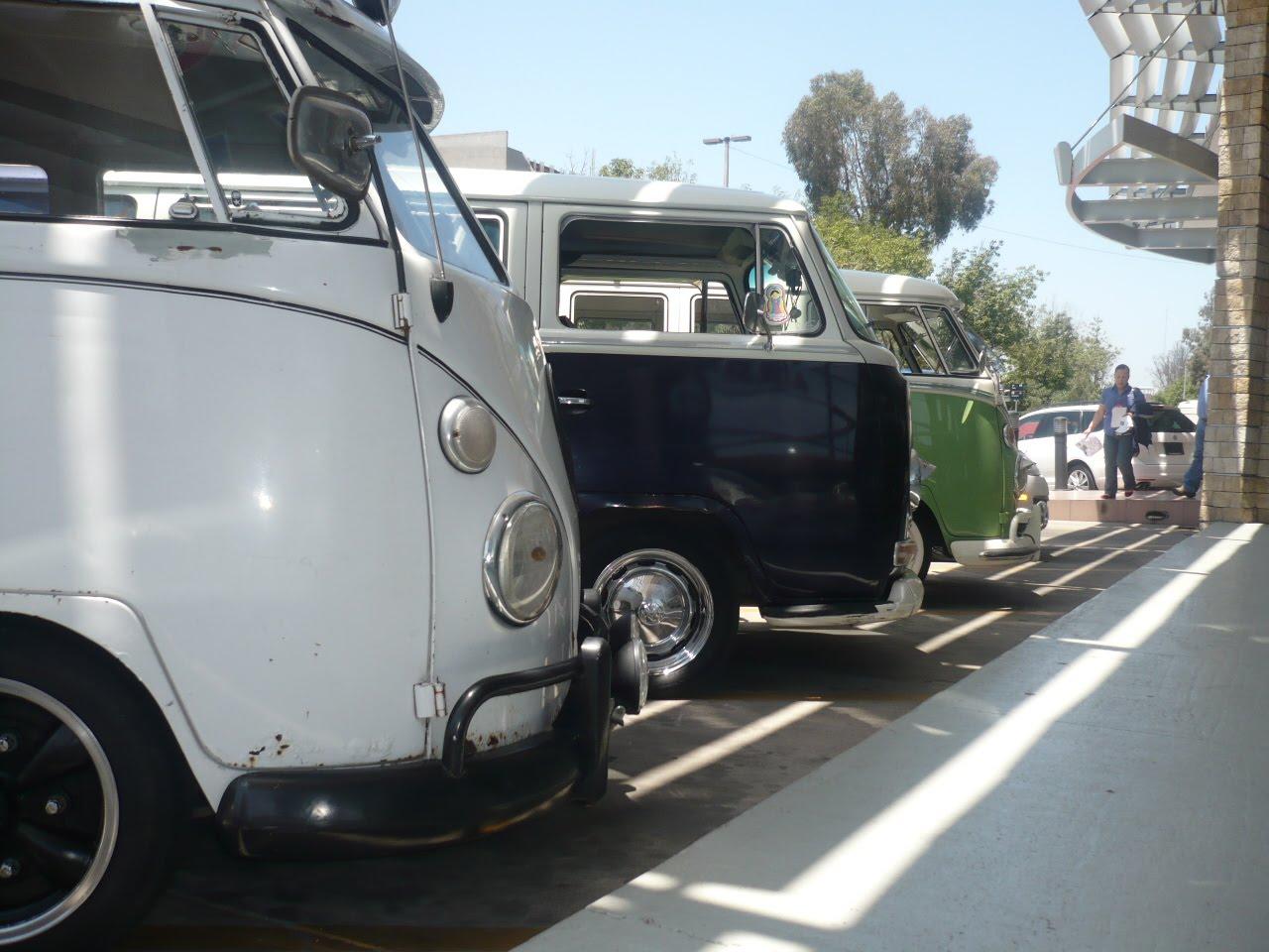 BUSES ONLY: CARAVANA CON AUTOS DE AGENCIA VW TIJUANA