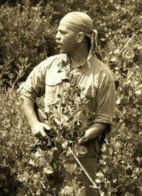 Albert Rasch,Hunter