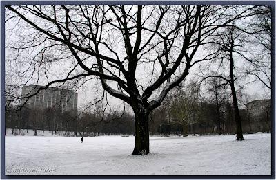 Park by Fehr Belliner Platz