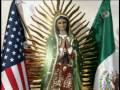 Serie la Rosa de Guadalupe en YouTube