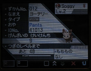 Soggy, the first Pokemon caught by Pants!