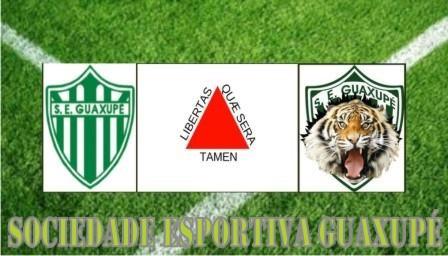 Sociedade Esportiva Guaxupé