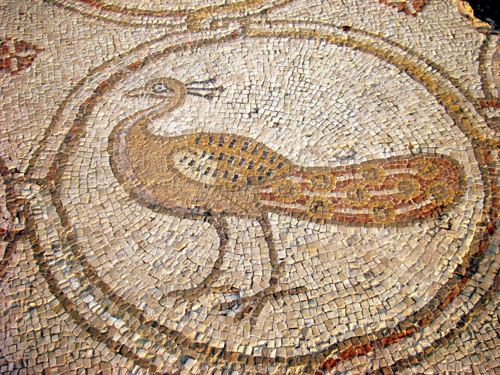 PazzaPazza: BIRD MOSAIC