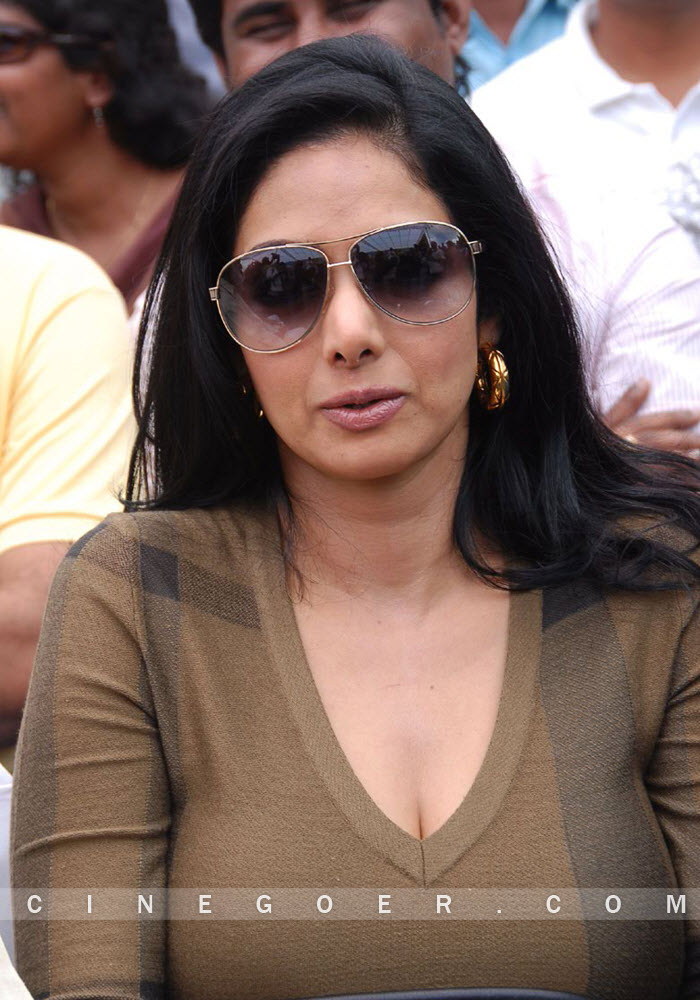 images of Sridevi Showing Her Hot Huge And Little Cleavage Top