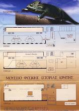 Μουσείο Φυσικής Ιστορίας, Ηράκλειο