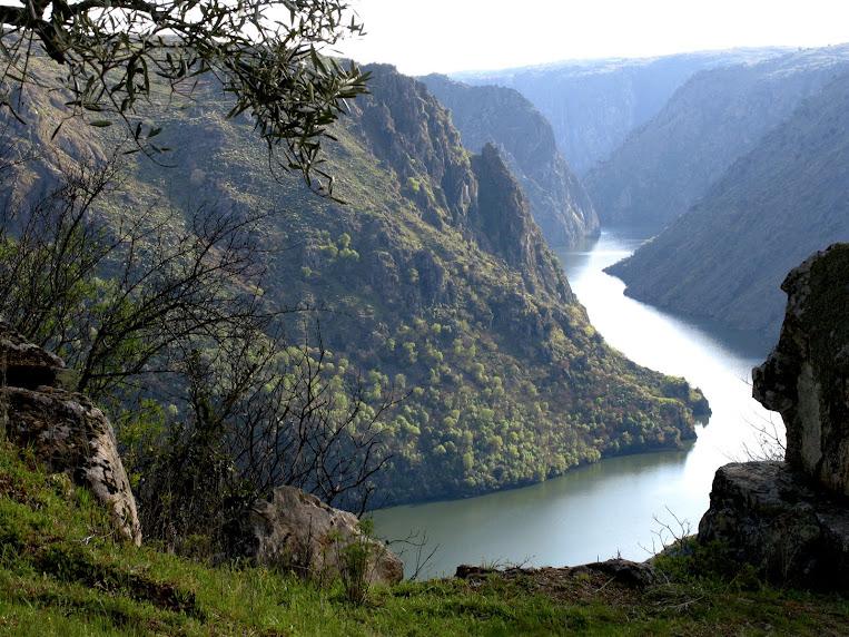 El sueño del río Duero