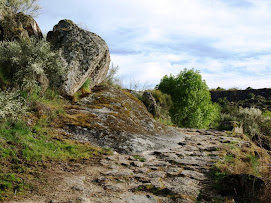 Calzada romana L-5 en el Picón de Felipe