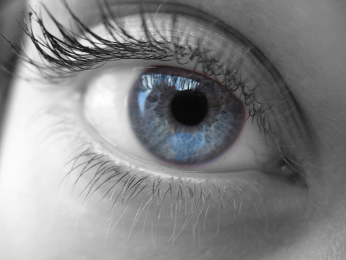 http://3.bp.blogspot.com/_V26e7bIgIY4/TIOuZvDDY4I/AAAAAAAABdU/Br1y3B-lXUo/s1600/bionic-eye.jpg