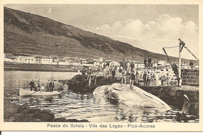 PESCA DA BALEIA NAS LAJES DO PICO