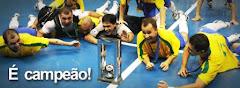 Mundial de Futsal 1989 -  Países Bajos