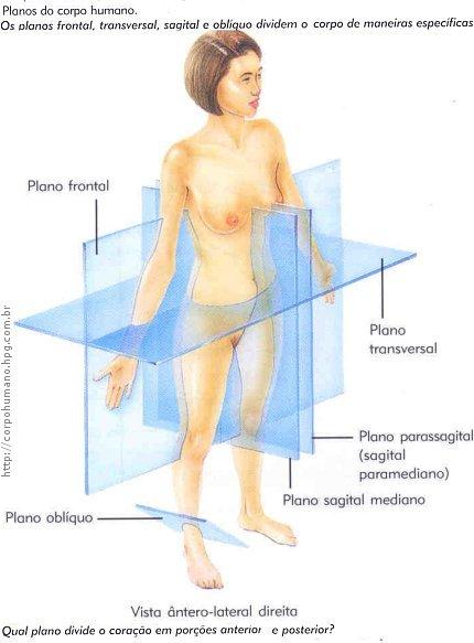 Figura 07 - Plano Frontal, Plano Sagital, Plano Transversal e Plano Obliquo