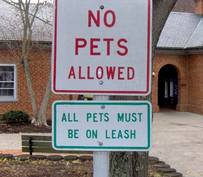 funny signs. more funny signs