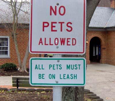 funny road signs. funny road signs. more funny