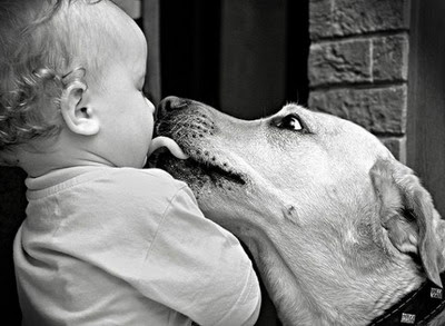 Nothing Comes Between a Kid and His/Her Dog
